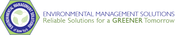 EMS_Hex_logo